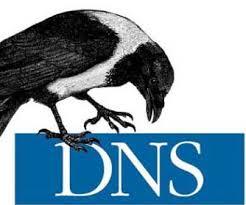 去中心化的DNS:域名系统中的政治
